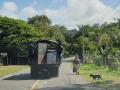 NikaraguaKostaryka354