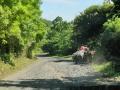 NikaraguaKostaryka363