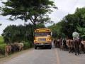 NikaraguaKostaryka380