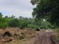 NikaraguaKostaryka402