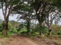 NikaraguaKostaryka407