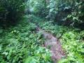 NikaraguaKostaryka417