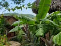 NikaraguaKostaryka436
