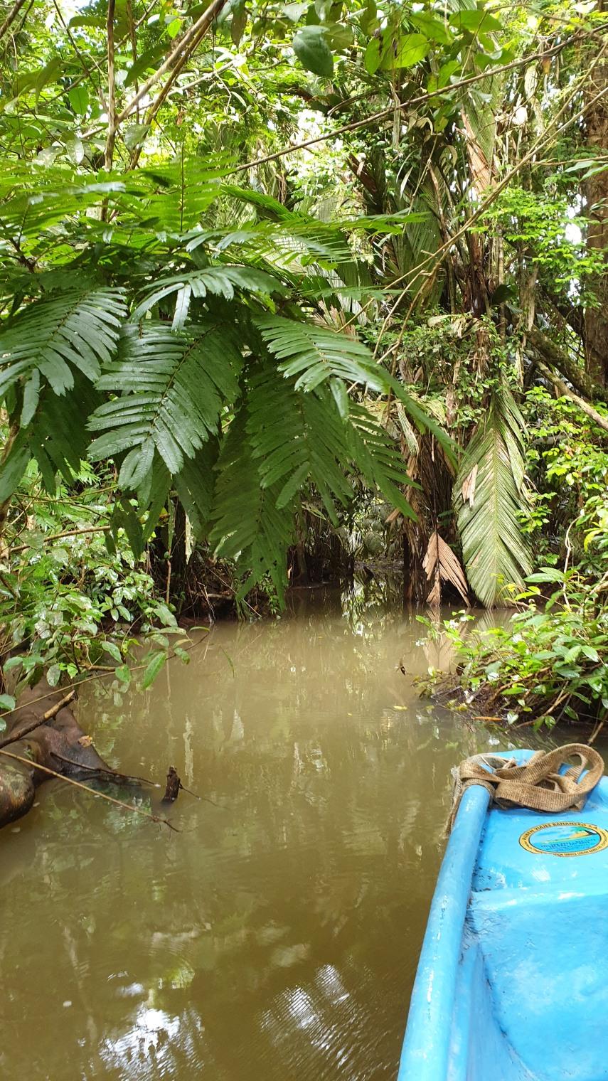 NikaraguaKostaryka614