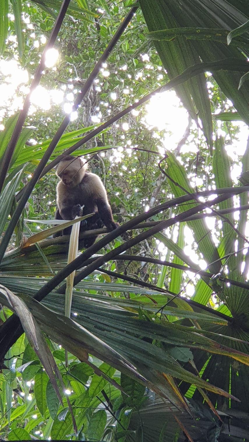 NikaraguaKostaryka655