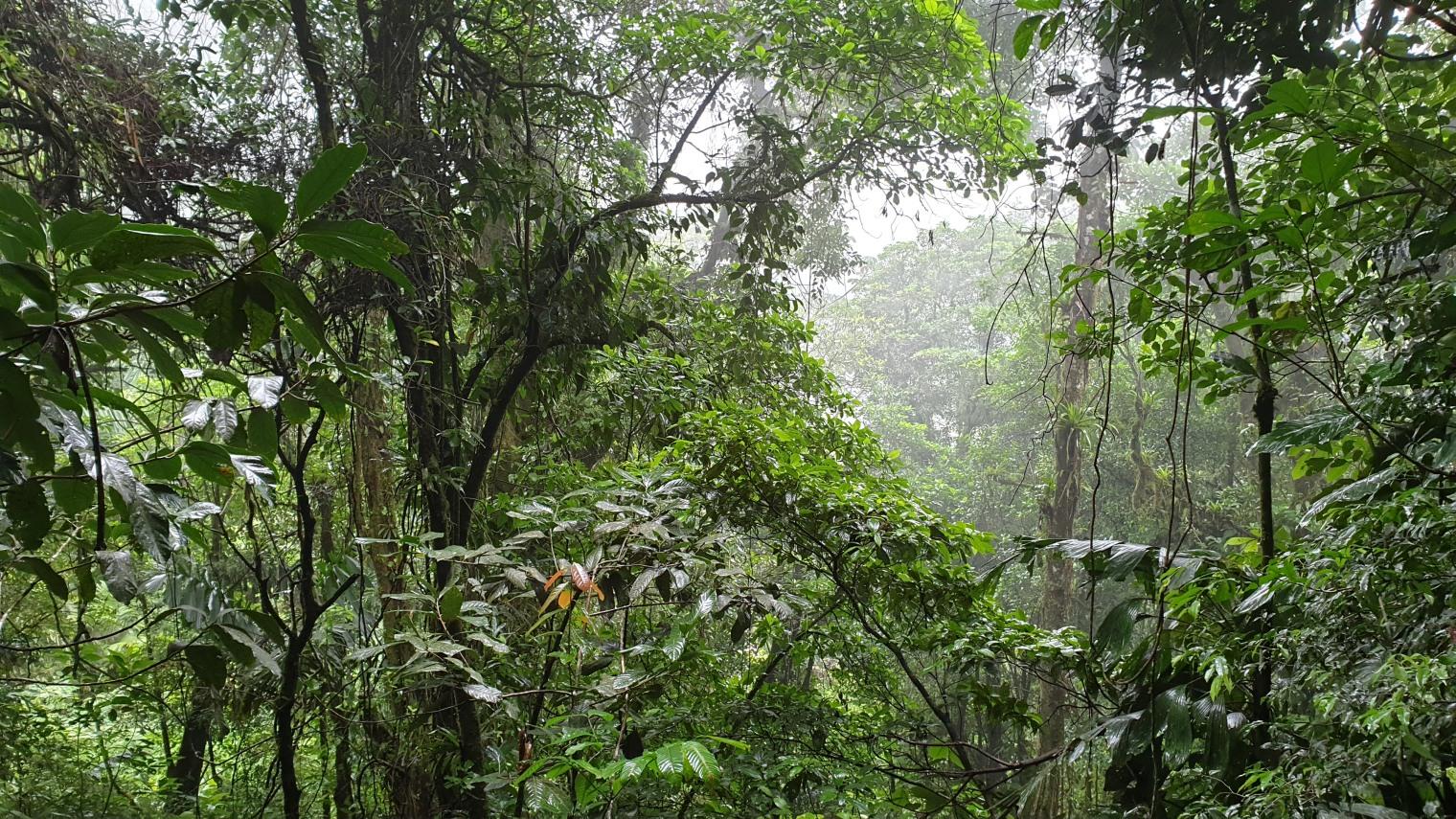 NikaraguaKostaryka687