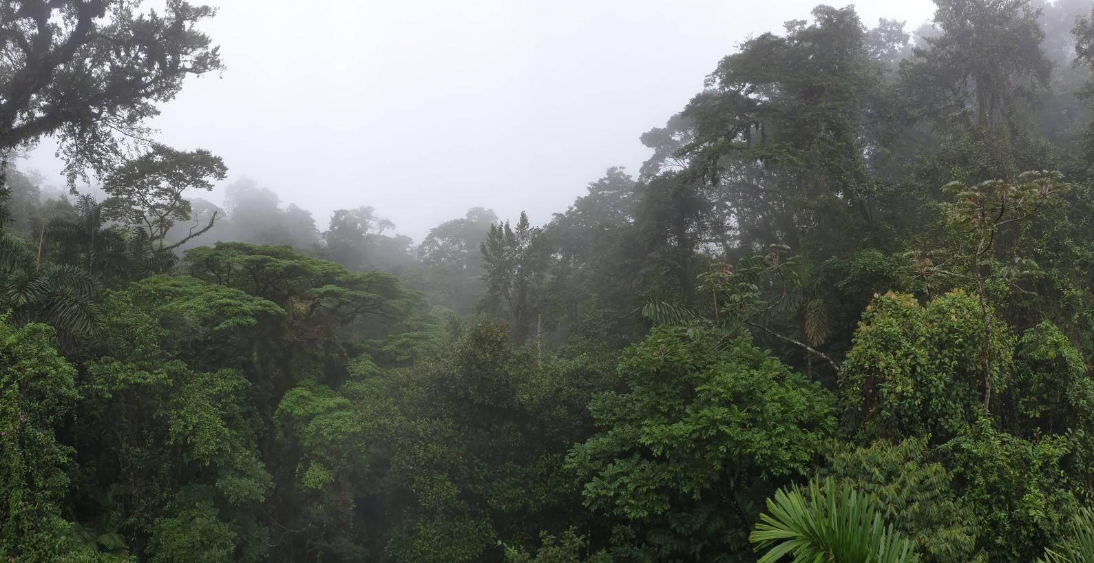 NikaraguaKostaryka726