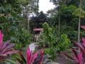 NikaraguaKostaryka579