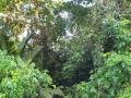 NikaraguaKostaryka600