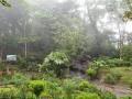 NikaraguaKostaryka685