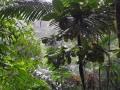NikaraguaKostaryka690