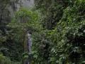 NikaraguaKostaryka734
