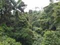 NikaraguaKostaryka740