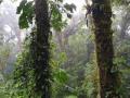 NikaraguaKostaryka765