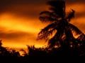 SriLanka19.jpg