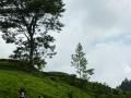 SriLanka8.jpg