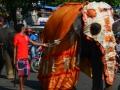 SriLanka9.jpg