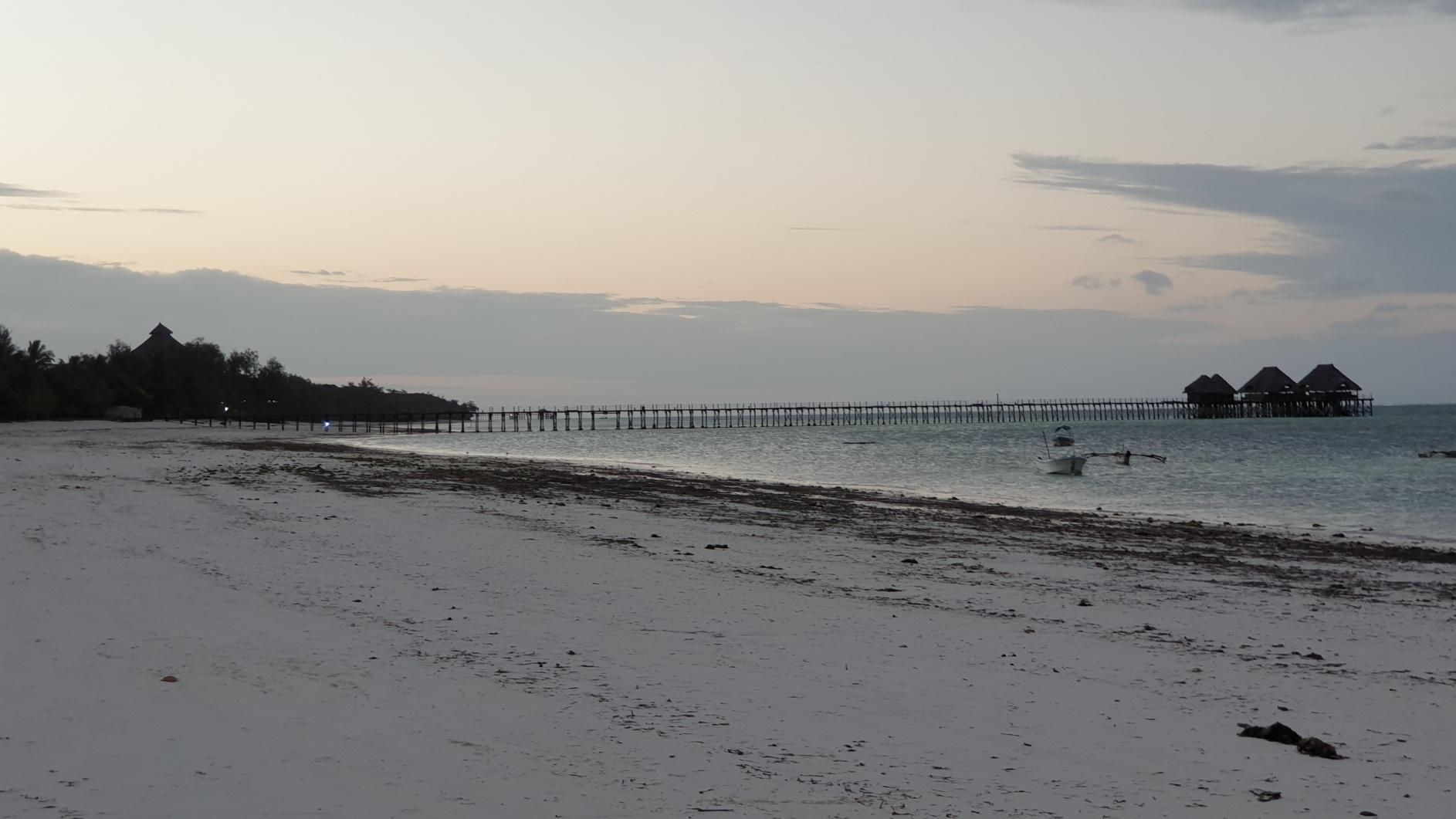 Zanzibar063