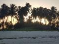 Zanzibar036