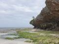 Zanzibar080