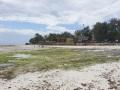 Zanzibar229
